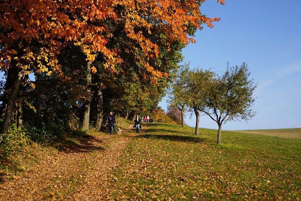 Herbstwandern, ©Michael Fischer