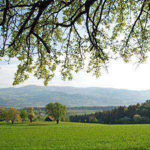 Landschaft Naturpark Pöllauer Tal, ©Rita Newman