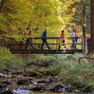 Wandern im Naturpark Pöllauer Tal, ©Rene Strasser