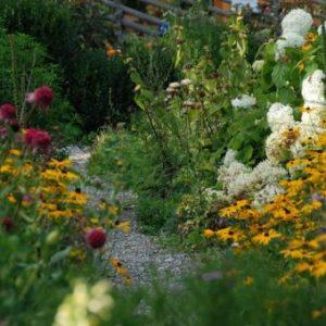 Alpenkräutergarten ©Alpenkräutergarten Käfer
