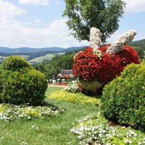 Hase, Blumen- und Gartendorf Pöllauberg