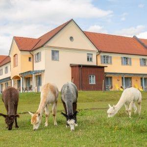 JUFA Hotel Pöllau Bio Landerlebnis Hausfoto ©Helmut Schweighofer